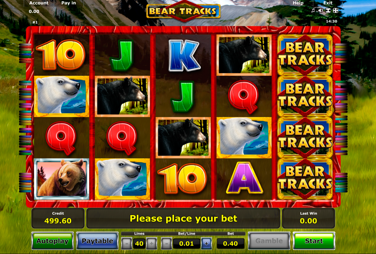 bear tracks novomatic online slots