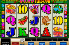 bush telegraph microgaming online slots