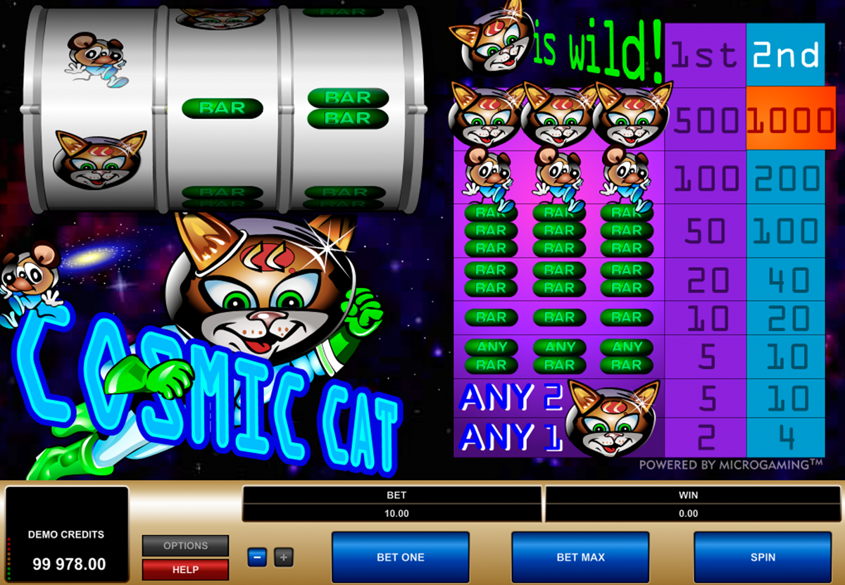 Fat Cat Slots Review & Free Instant Play Casino Game