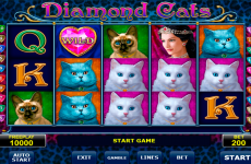 diamond cats amatic online slots
