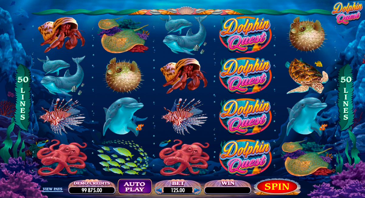 dolphin quest microgaming online slots