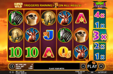 hot safari pragmatic online slots