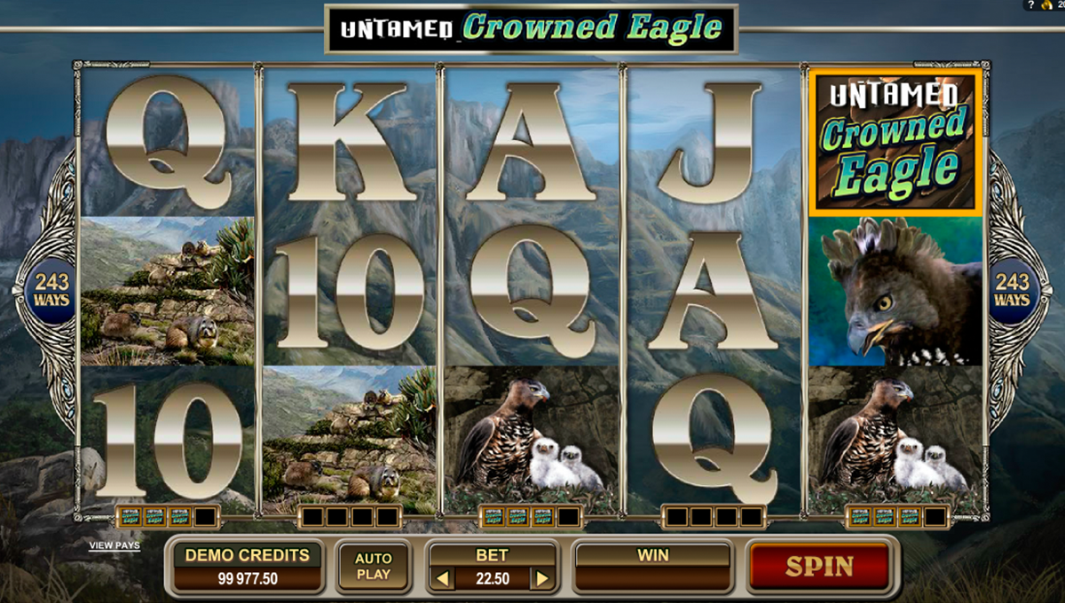 untamed crowned eagle microgaming online slots