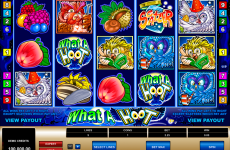 what a hoot microgaming online slots
